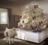 Serta Counting Sheep